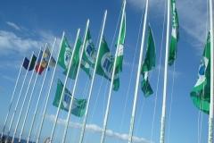 Bandeira Verde 2008