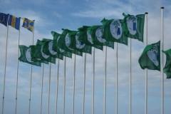Bandeira Verde 2010