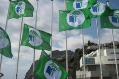 Bandeira Verde 2011