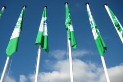 Bandeira Verde 2014