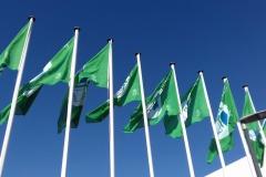 Bandeira Verde 2017