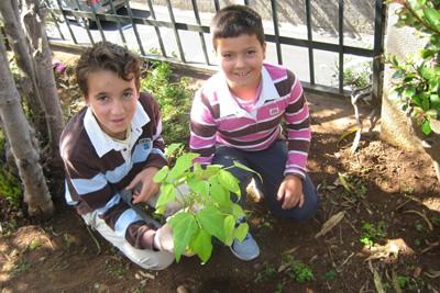 Comemoração do Dia Mundial do Ambiente